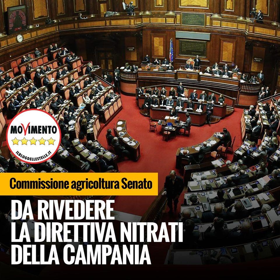 Filiera bufalina. Il Senato sconfessa De Luca e Alfieri