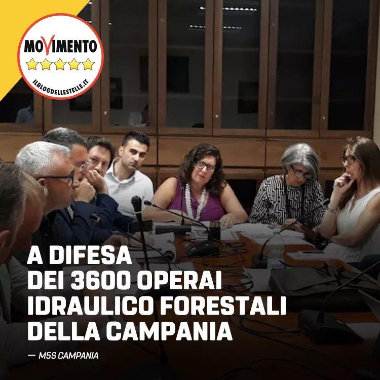 Dramma forestali in commissione trasparenza